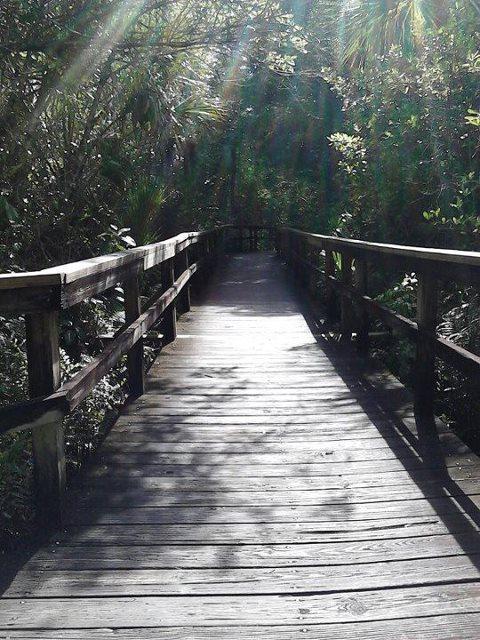 boardwalk1