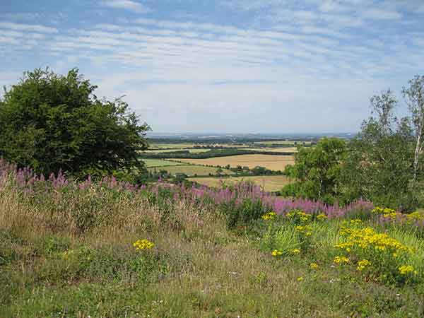 View of South Oxfordshire from atop the Chilterns at Watlington Hill. Photo by Patrick Higgins