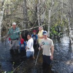 Patrick Higgins, left, leads a group in the Fakahatchee Strand.