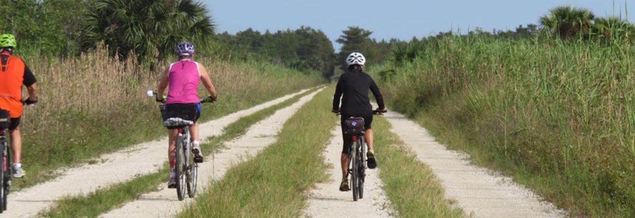 Biking the Fakahatchee