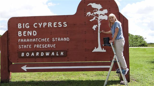 Francine Stevens is a hands-on President for the Friends of Fakahatchee.