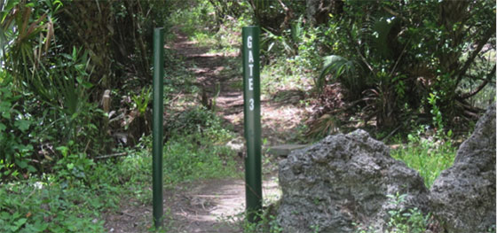 Gate 3 Trail